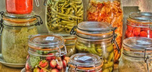aliments boissons fermentés