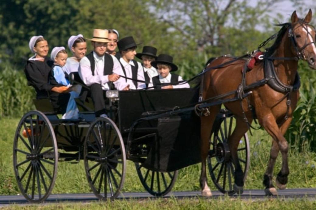 longévité des Amish